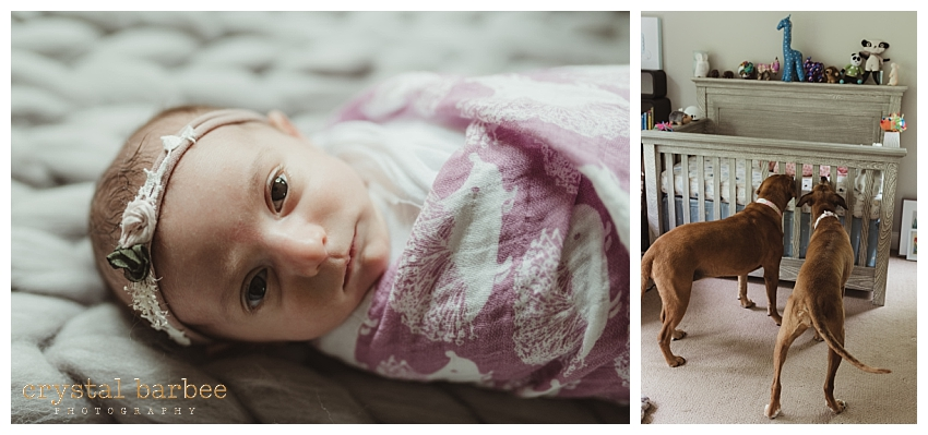 Crystal Barbee Maternity Photography_0642.jpg