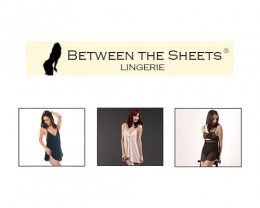 betweenthesheets-260x208.jpg