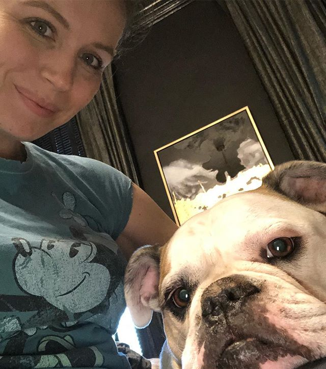 we hanging 🐶 #americanbulldog #lifeincornhill #lovehertopieces