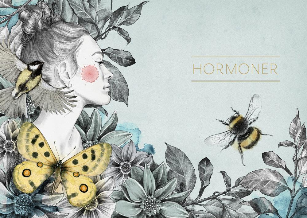 Hormonkalendern_kundcase_hormoner.jpg