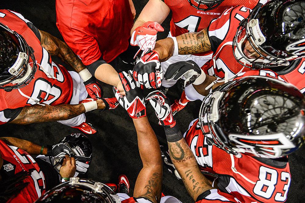 Falcons 3.jpg