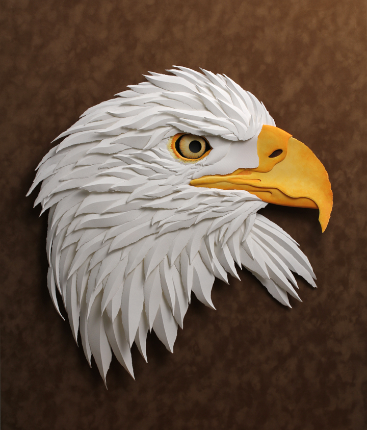 The Free Eagle Project - - UPDATE #3 - - — TIM WEST