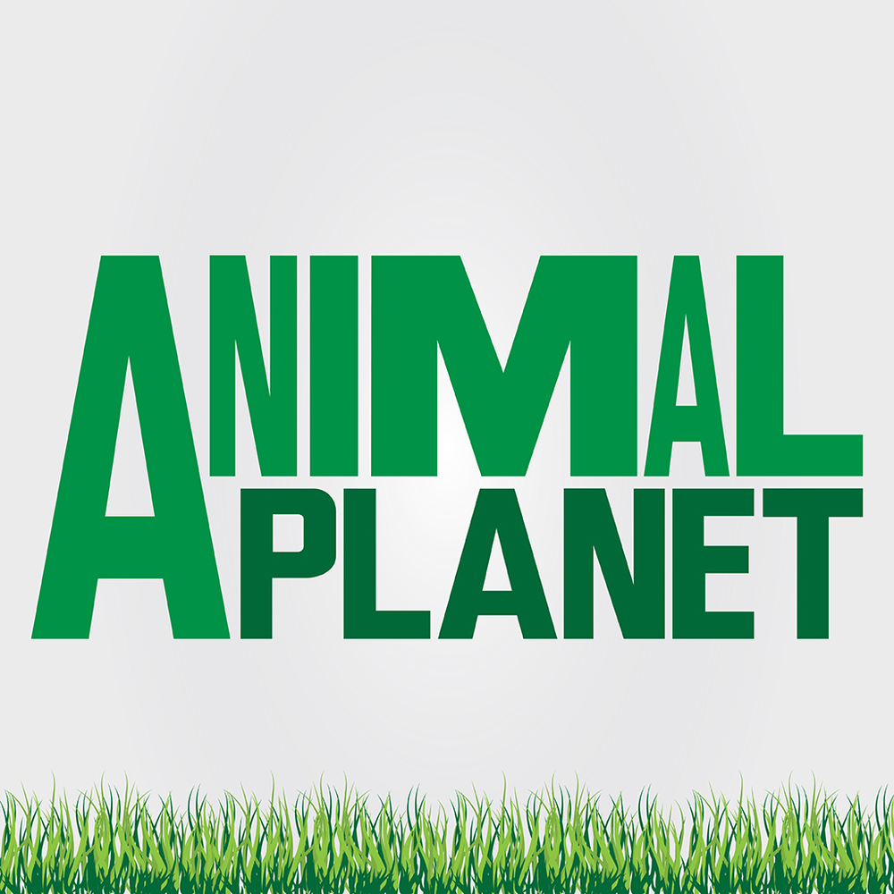 Animal_Planet_Web_SermonPage.jpg