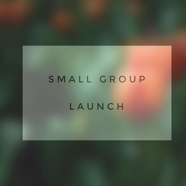 Small groups launch this Sunday! Be there for good snacks, new friends, and fun times! If you haven't signed up yet, the link is in our bio.