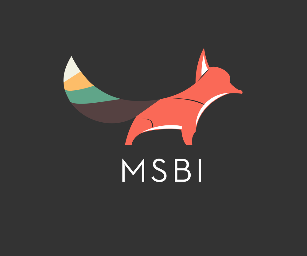 MSBI A marketing intelligence firm.