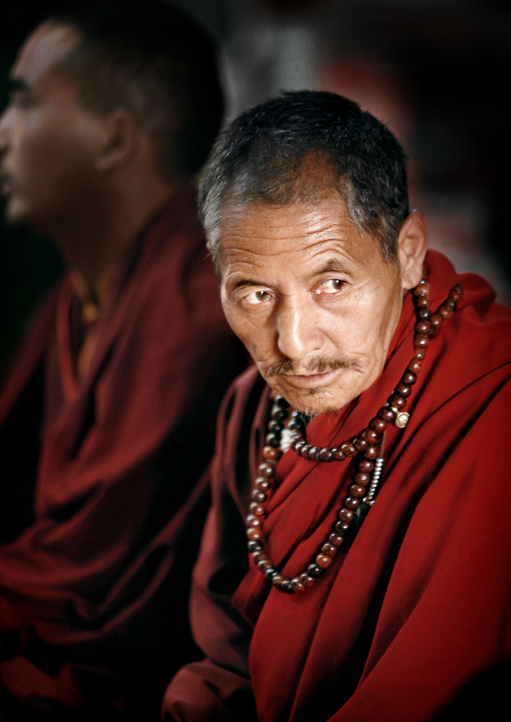 Monk during morning Puja, Hemis Gompa, Ladakh, India