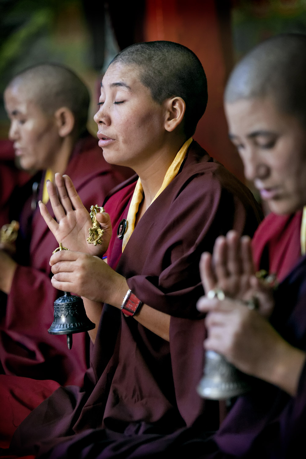 Nuns in prayer, Hemis Monastery