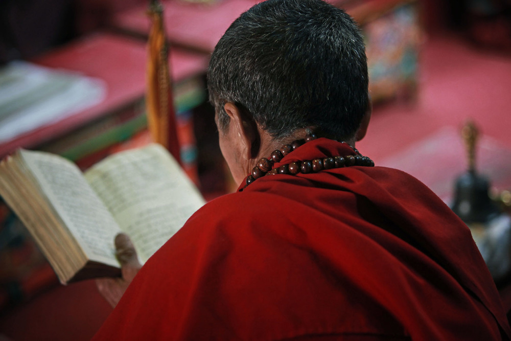 Monk at early mornig puja, Hemis Monastery