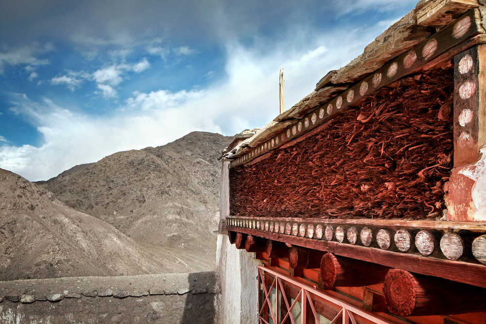 Detail, Chemdrey Monastery, Ladakh, India