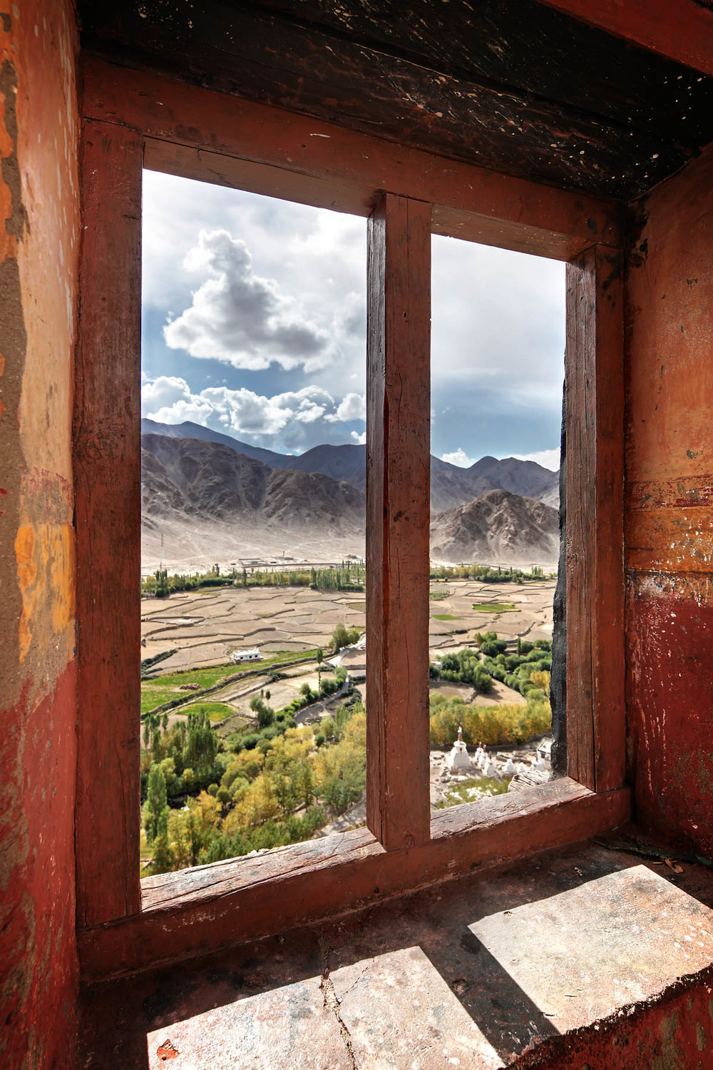 View over the barley fields, Chemdrey Monastery, Ladakh, India
