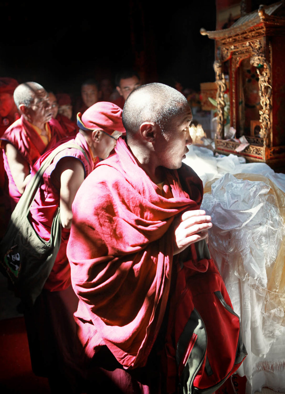 Sacred relic on display, Hemis Monastery, Ladakh