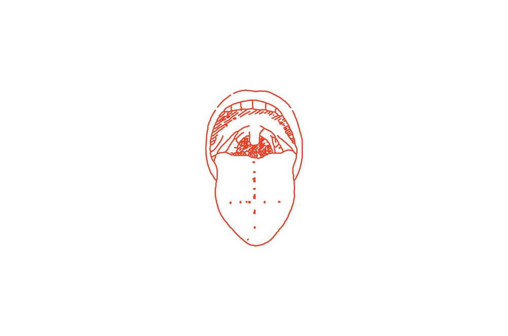 "The tongue logo emphasizes the importance of gustation in the Archetype experience. The four ""taste"" zones of the tongue are defined boundaries. It's wavering, hand-drawn lines speak to the deeply personal dining experience of each individual guest."