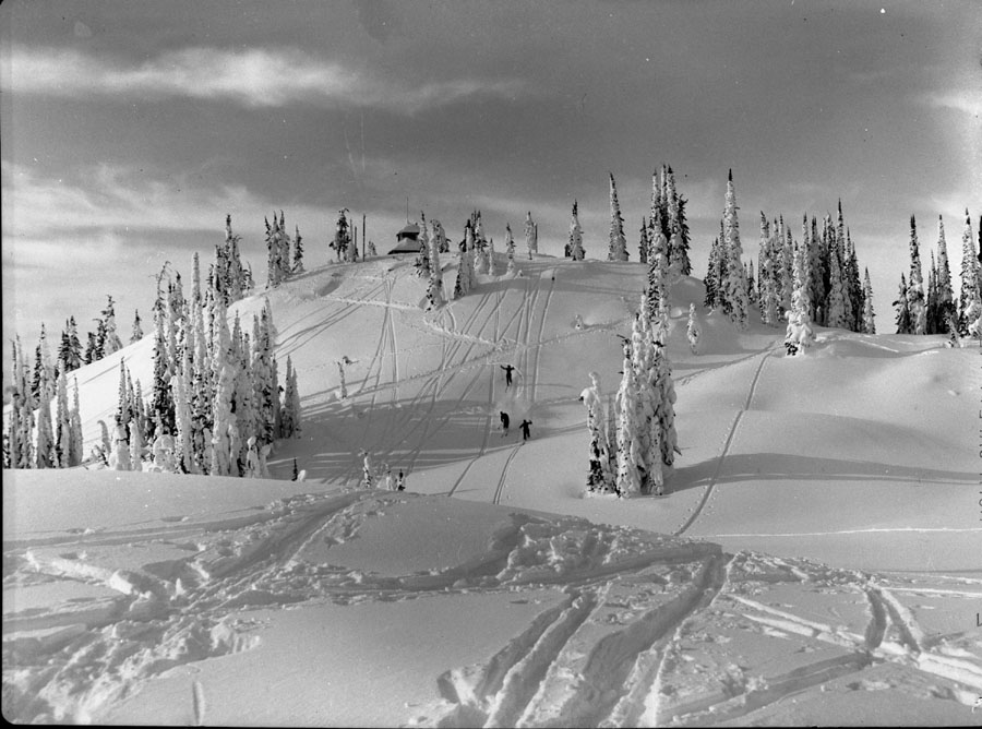 Skiers on Mt. Revelstoke [DN-268]