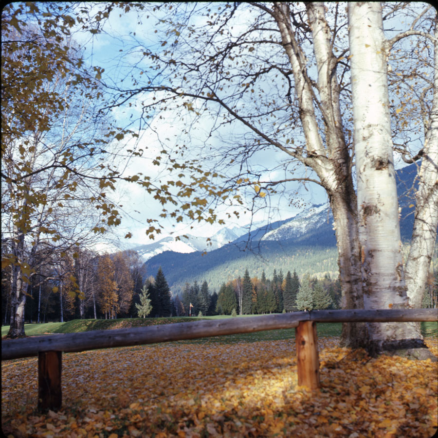 Revelstoke Golf Course Autumn [DC2-19]