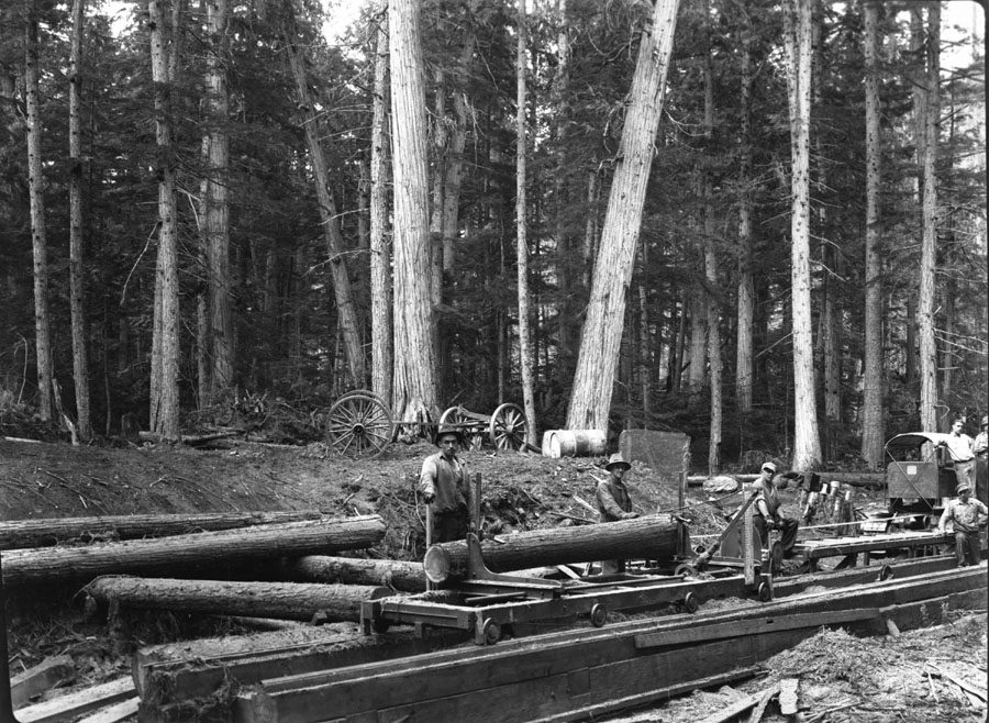 Portable Saw Mill, Canoe River [DN-320]