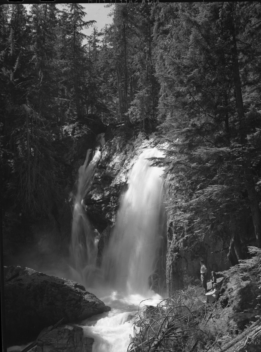 Cooper's & Dickeys at Begbie Falls [DN-465]