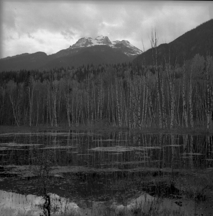 Slough and Mt. Begbie across River [DN-479]