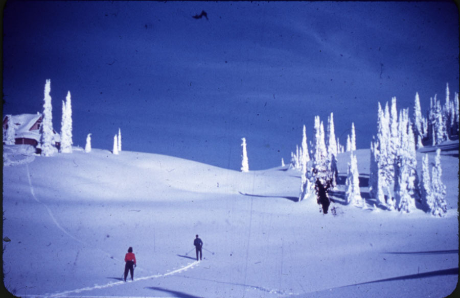 Skiers on Mt. Revelstoke Summit [DC1-25]