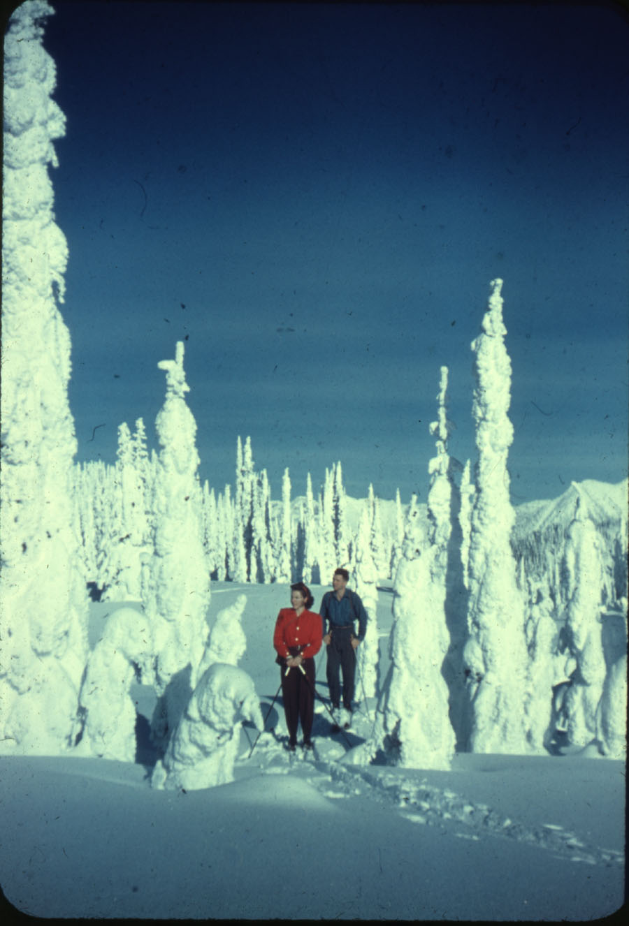 Skiers on Mt. Revelstoke Summit [DC1-50]