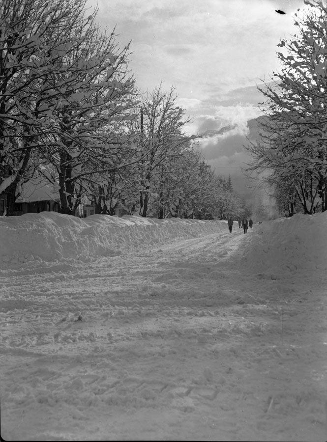 Mackenzie Avenue in Winter [DN-323]