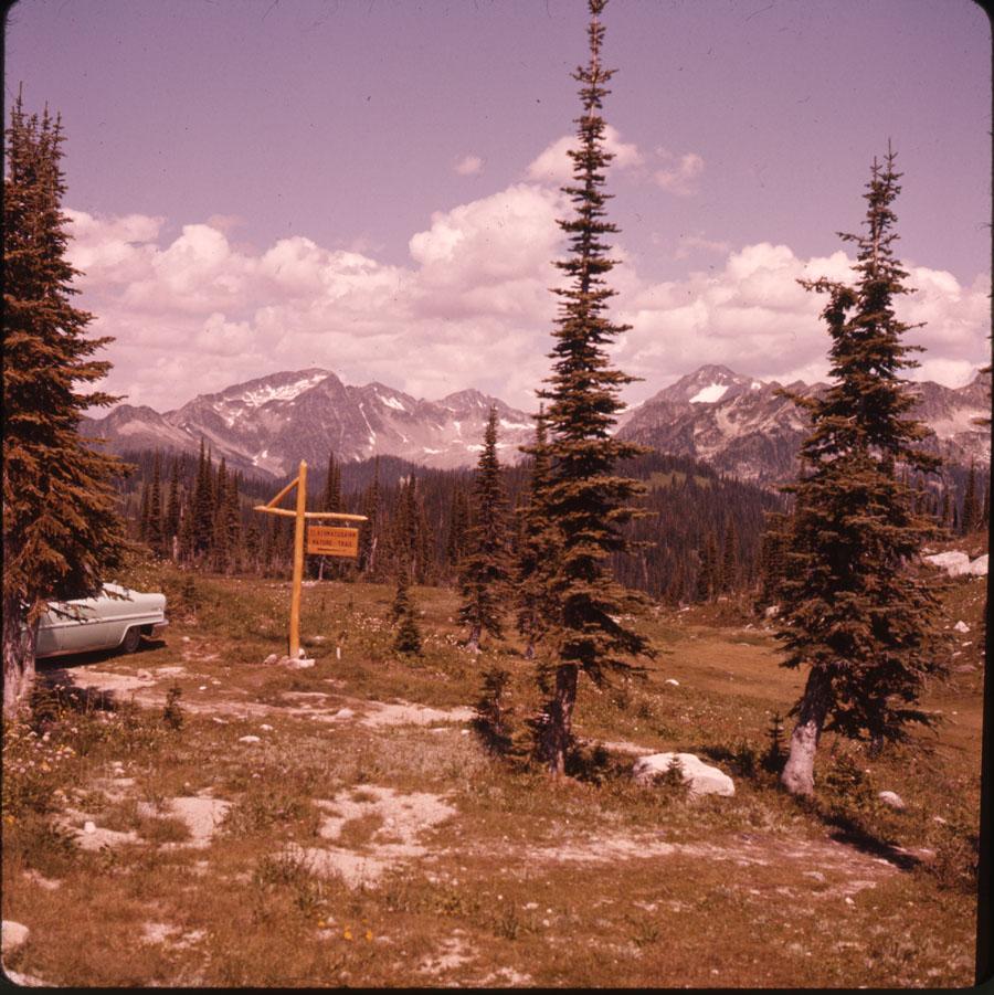 Mt. Revelstoke Summit [DC2-47]