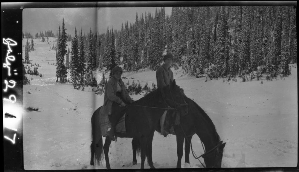Horseback Mt. Revelstoke [DN-5]