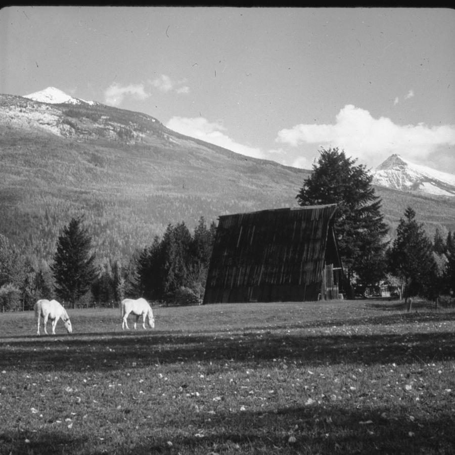 Lanzo's Farm, A-Frame Barn [DN-818]