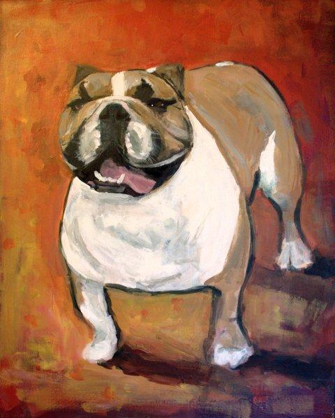 bulldog5.jpg