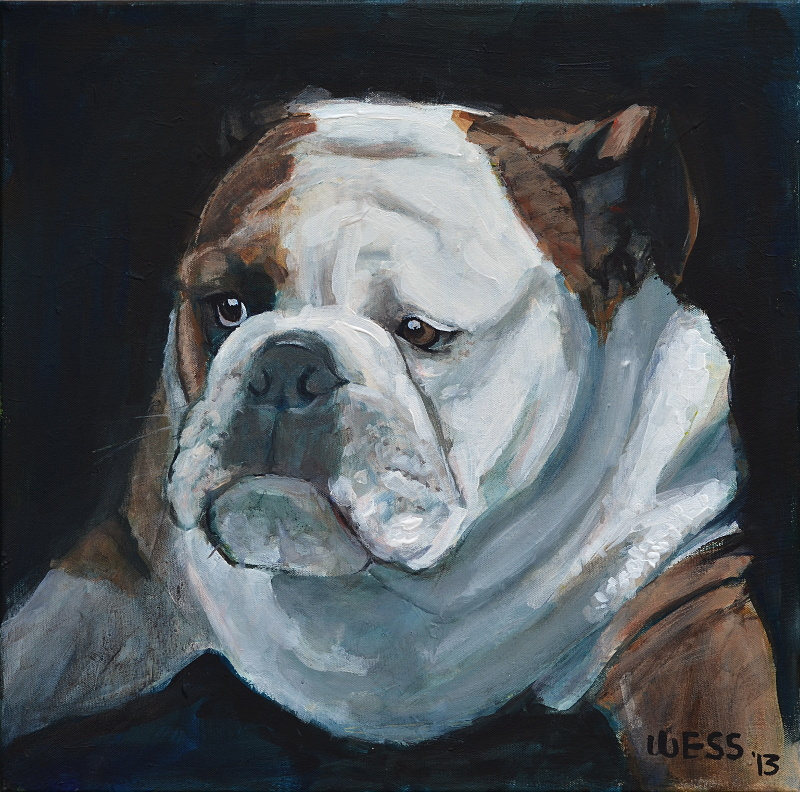 "Bulldog Contemplation  20x20"", $250"