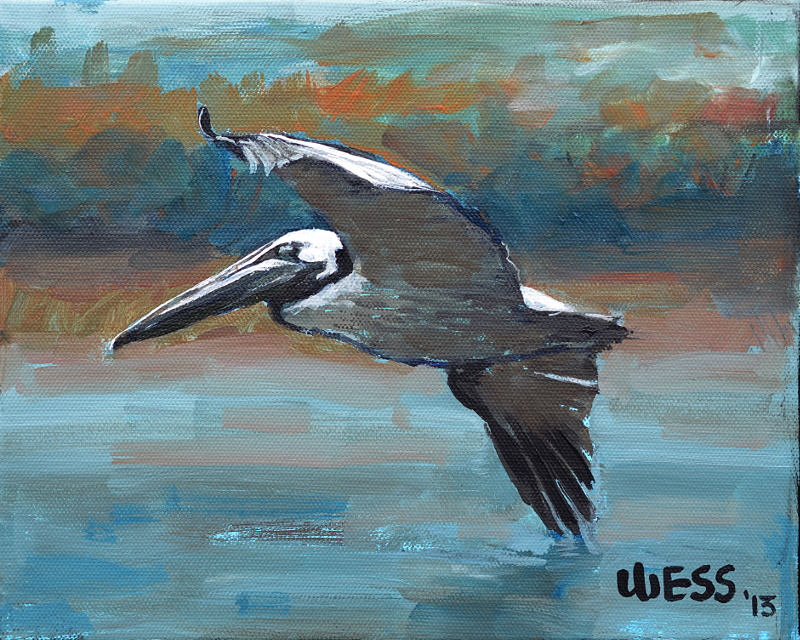 "Brown Pelican in Flight  8x10"",  SOLD"