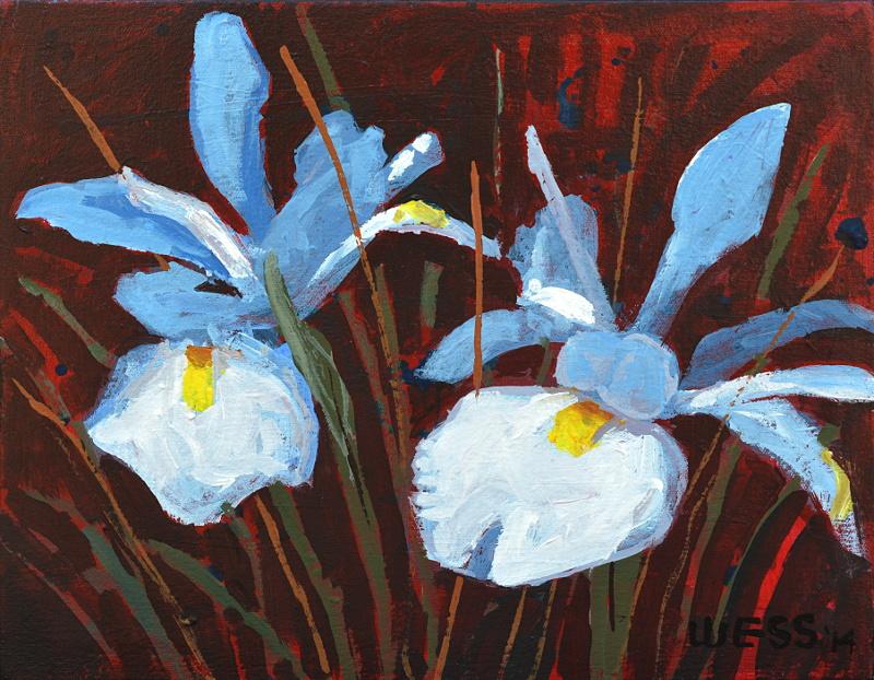 """Blue Iris, 12x14.5"""", $80"""