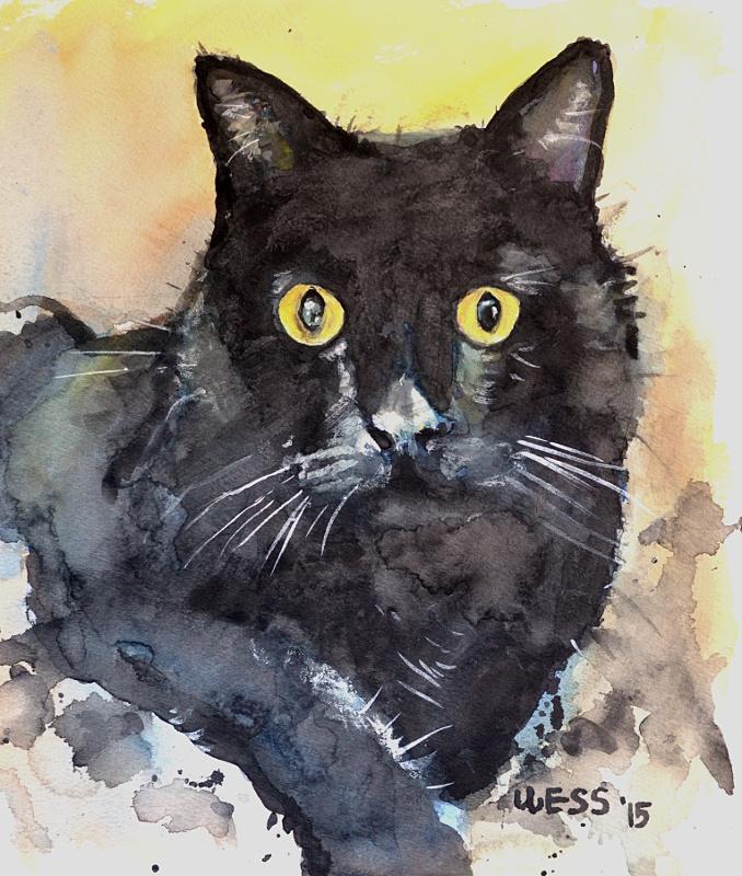 """Black Cat, 10x8"""", $90"""