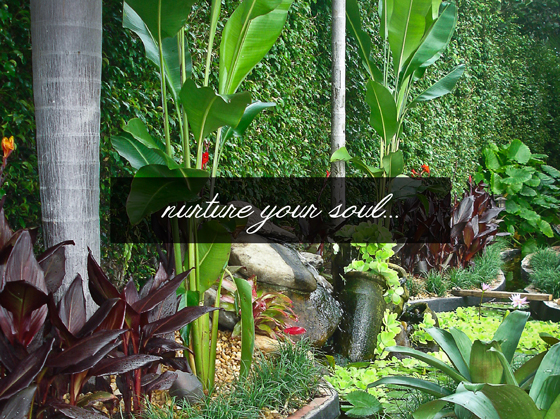 Flora-Tropica-HOME-NuertureYourSoul.jpg