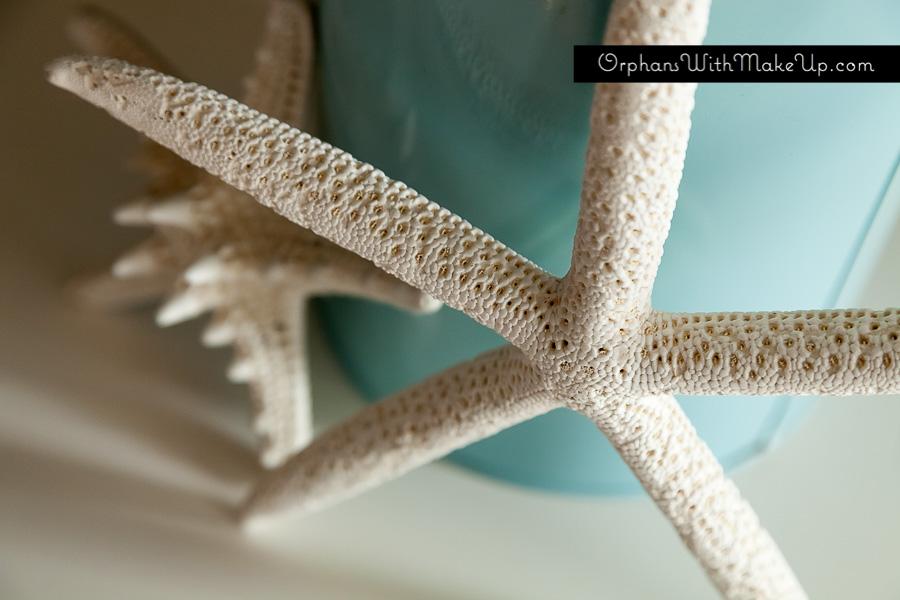 [starfish]