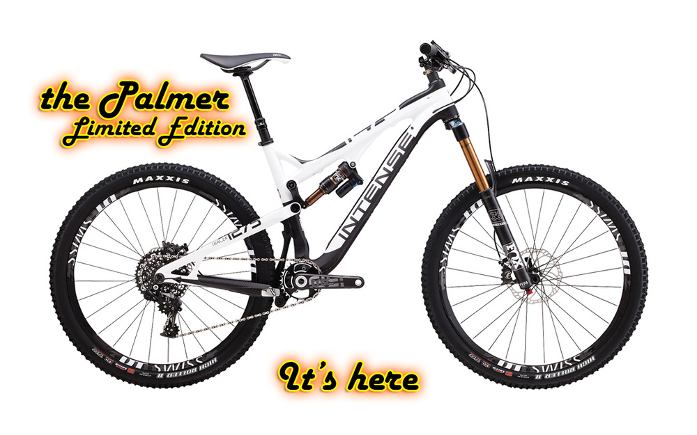 Tracer Palmer Edition - Limited Edition