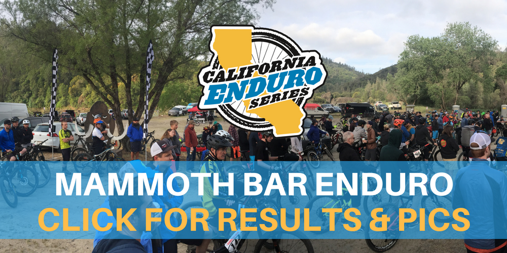 Mammoth Bar Pics & Results.png