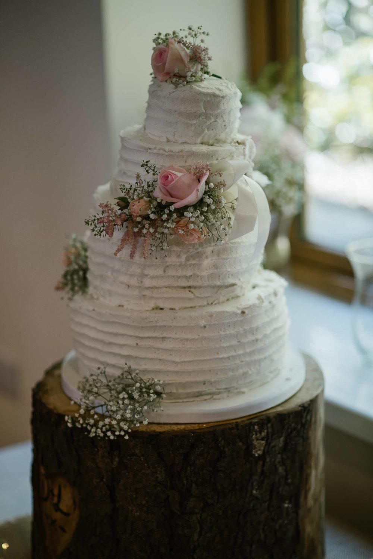 TREDUDWELL-MANOR-WEDDING-PHOTOGRAPHER-117.jpg