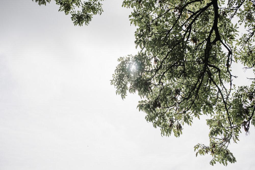CORNWALL-WEDDING-PHOTOGRAPHER-2783.jpg