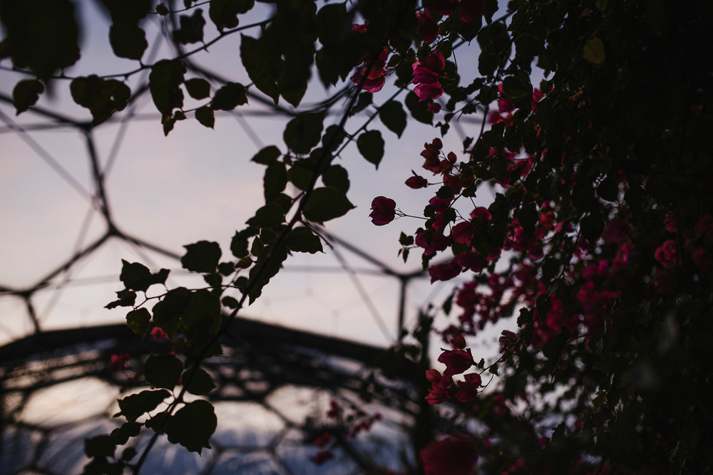 CORNWALL-WEDDING-PHOTOGRAPHER-2943.jpg