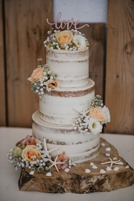 CORNWALL-WEDDING-PHOTOGRAPHER-1484.jpg