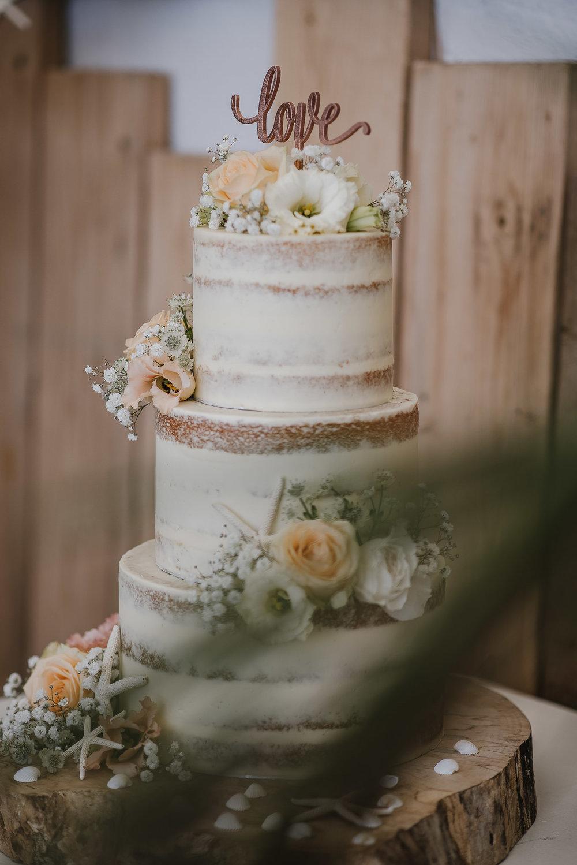 CORNWALL-WEDDING-PHOTOGRAPHER-1483.jpg