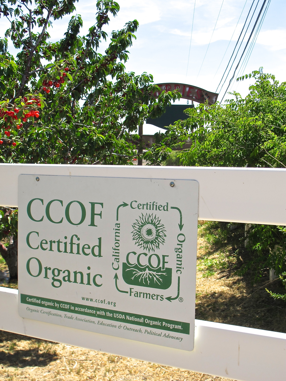 Copeland's Certified Organic Cherry Ranch