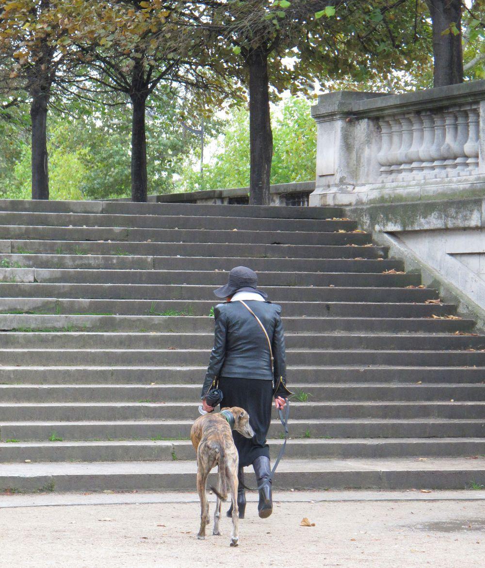 woman dog.jpg