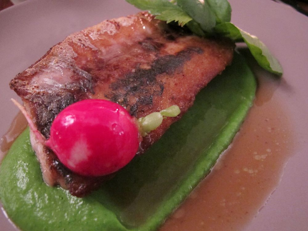 Roseval's white fish on parsley puree