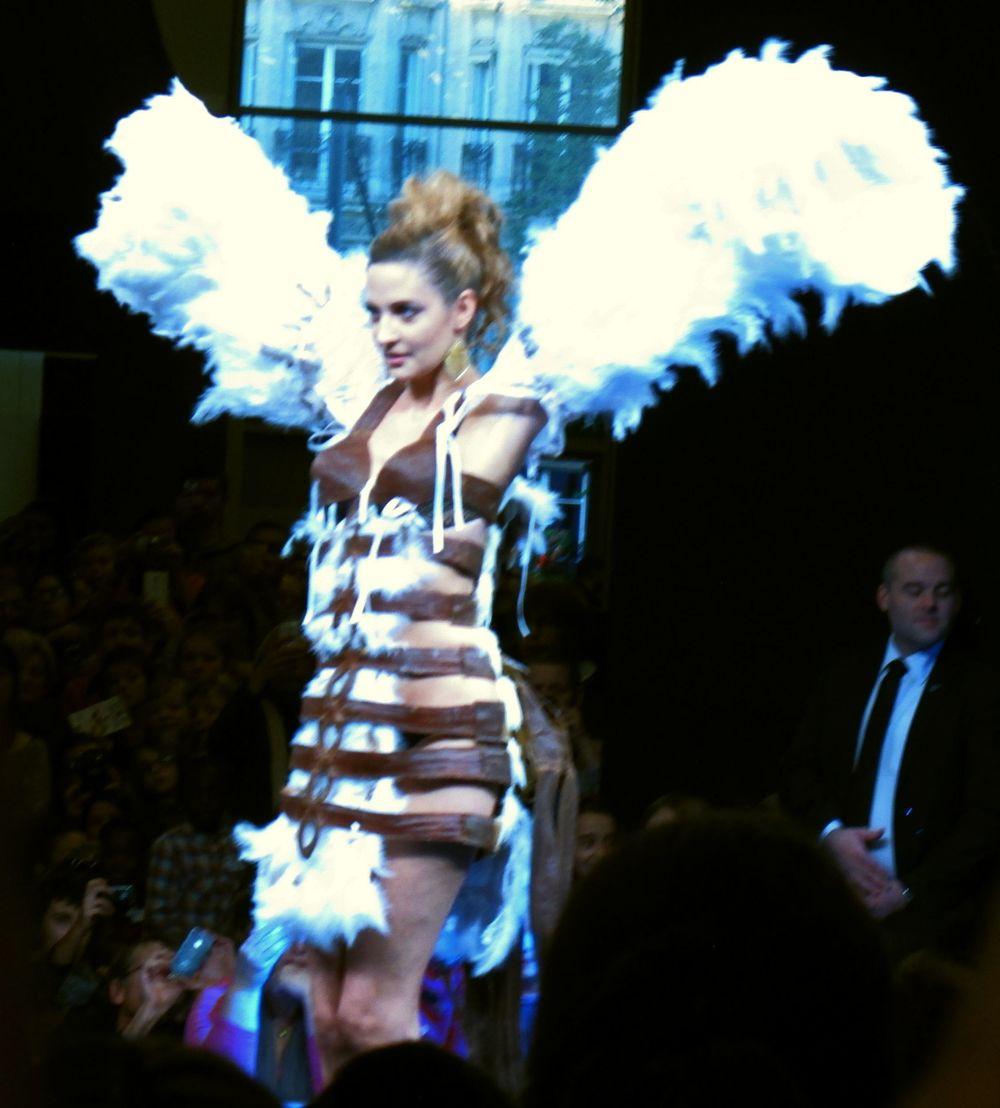 f wings.jpg