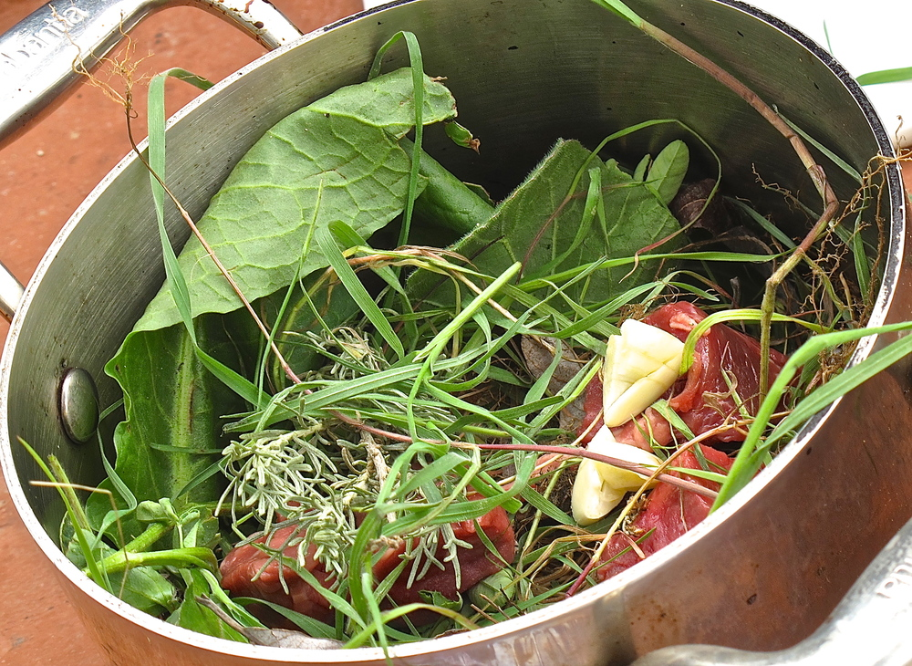 Wild Foraging and Cooking