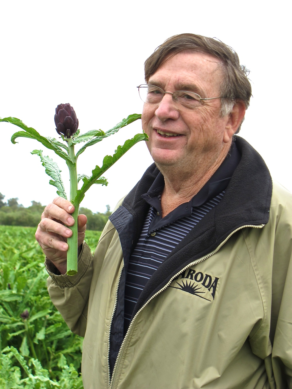 Steve Jordan, Baroda Farms