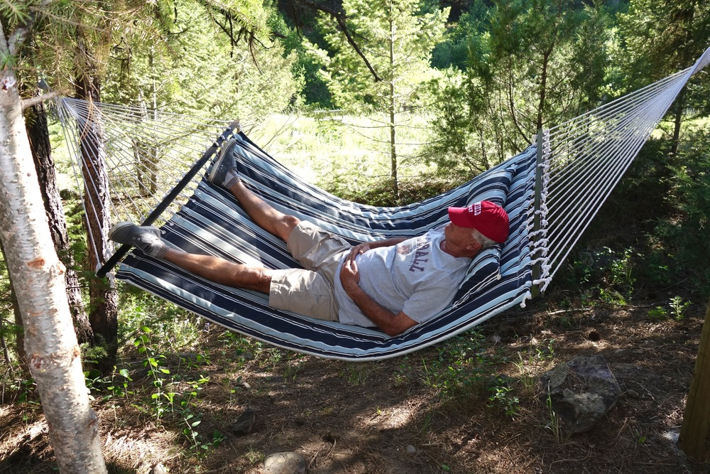 Paws Up hammocks