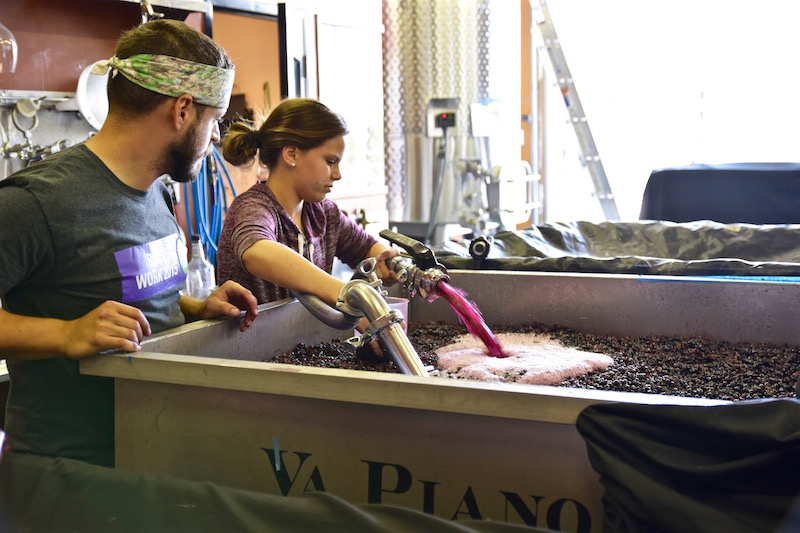 Va Piano winemaking
