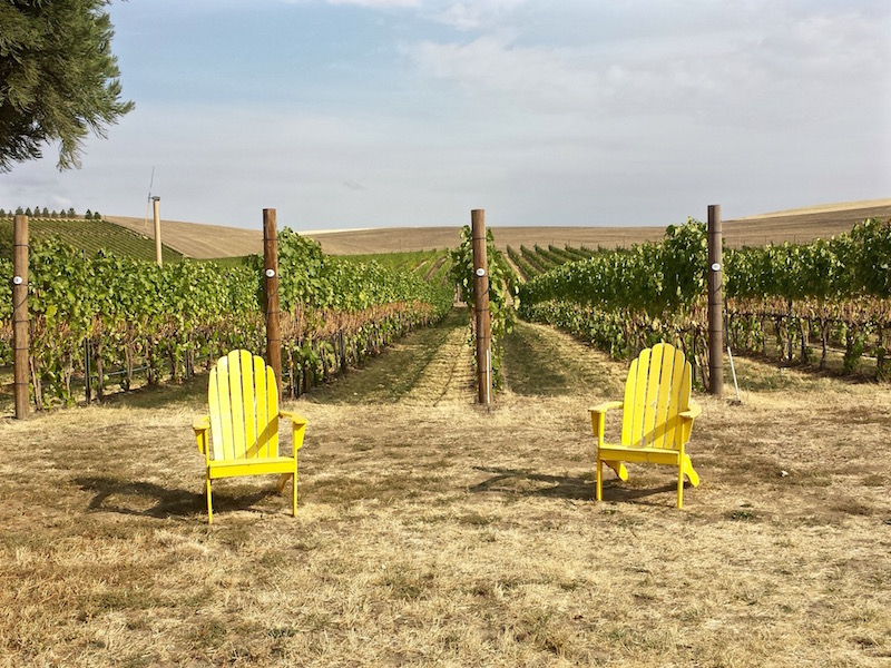 Walla Walla Vineyards